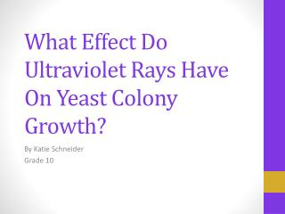 What Effect Do Ultraviolet Rays Have On Yeast Colony Growth?