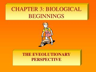 CHAPTER 3: BIOLOGICAL BEGINNINGS