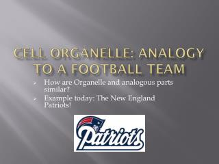 Cell Organelle: Analogy To A Football Team