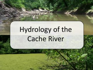 Hydrology of the Cache River