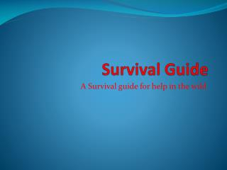 camp green lake survival guide