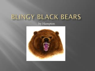 Blingy  Black Bears