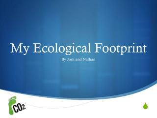 My Ecological Footprint