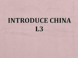 Introduce China L3