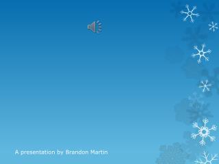 A presentation by Brandon Martin