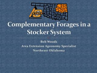 Complementary Forages in a Stocker System