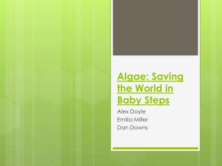 Algae: Saving the World in Baby Steps