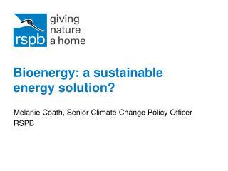 Bioenergy: a sustainable energy solution?