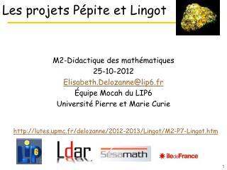 Les projets P�pite et Lingot
