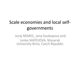 Scale economies  and  local self-governments