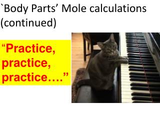 """"""" Practice,       practice,         practice…."""""""