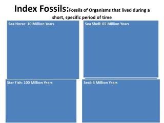 Index  Fossils: Fossils of Organisms that lived during a short, specific period of time