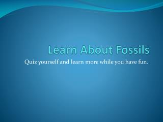 Learn About Fossils