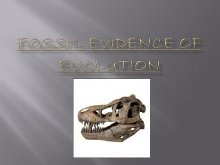 Fossil Evidence of Evolution