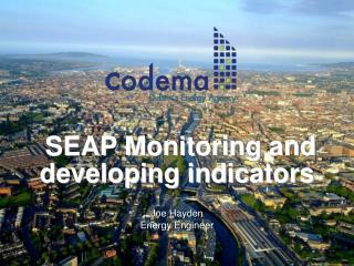 SEAP Monitoring and developing indicators