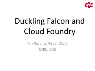 Duckling Falcon and Cloud Foundry