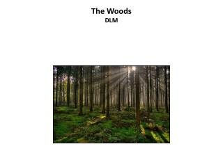 The Woods DLM