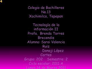 Colegio de Bachilleres No.13 Xochimilco, Tepepan Tecnología de la información II