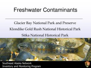 Freshwater Contaminants