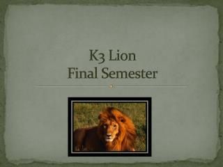 K3 Lion  Final Semester
