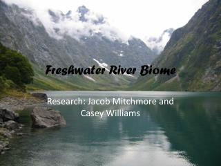 Freshwater River Biome