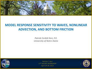 MODEL RESPONSE SENSITIVITY TO WAVES, NONLINEAR ADVECTION, AND BOTTOM FRICTION