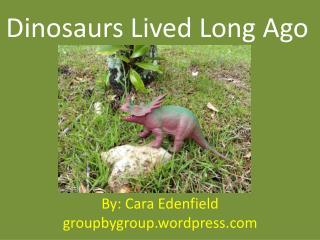 Dinosaurs Lived Long Ago