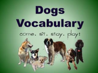 Dogs  Vocabulary