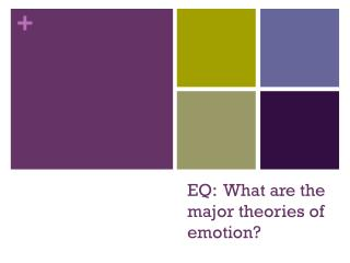 EQ:  What are the major theories of emotion?