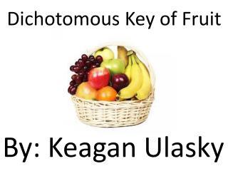Dichotomous Key of Fruit