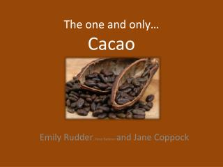 The one and only… Cacao