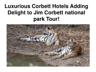 Luxurious Corbett Hotels Adding Delight to Jim Corbett natio