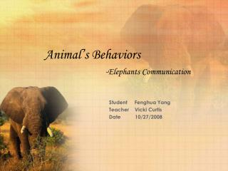 Animal's Behaviors -Elephants Communication