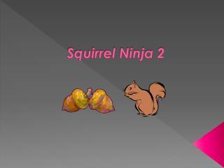 Squirrel Ninja 2