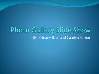 Photo Gallery Slide Show