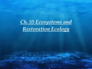 Ch. 55 Ecosystems and Restoration Ecology