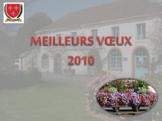 MEILLEURS VŒUX  2010