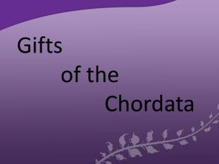 Gifts  		of the Chordata