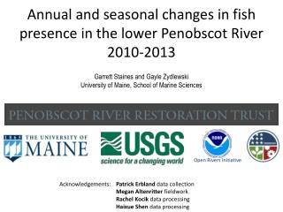 Annual and seasonal changes in fish presence in the lower Penobscot River 2010-2013