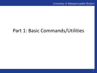 Part 1: Basic Commands/Utilities