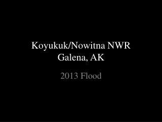 Koyukuk/Nowitna NWR Galena, AK