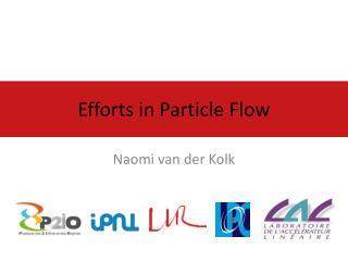 Efforts in Particle Flow
