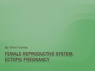 Female Reproductive System: Ectopic Pregnancy