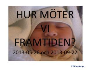 HUR MÖTER             VI FRAMTIDEN ? 2013-05-26 och 2013-09-22