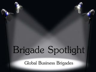 Brigade Spotlight Global Business Brigades