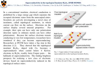 Superconductivity in the topological Insulator Bi 2 Se 3  (DMR 0819860)