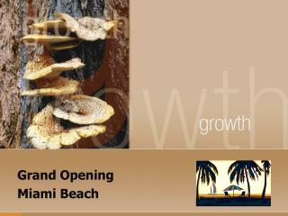 Grand Opening Miami Beach