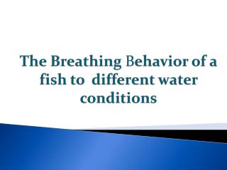 The Breathing  B ehavior of a fish to  different water  conditions