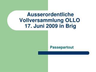 Ausserordentliche Vollversammlung OLLO  17. Juni 2009 in Brig