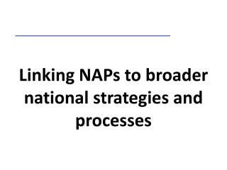 Linking NAPs to broader national strategies and processes
